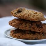 Biscoito de aveia e cranberries secas (ou passas, frutas secas)