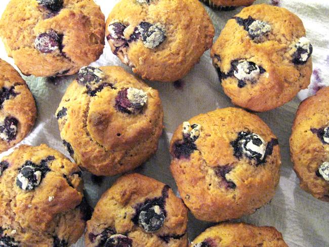 Muffins de blueberry (mirtilo)